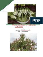 plante-totalizare-2