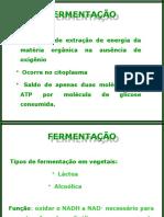 filename_=utf-8''Fermentação