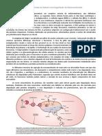 resumo_cap10_degradação de moléculas