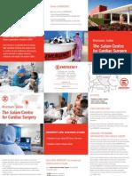 EMERGENCY Salam Centre - Factsheet 2010
