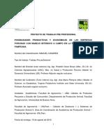 Posibilidades productivas y economicas de las empresas porcinas con manejo intensivo a campo en la region semiarida pampeana