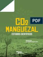 Co2-Manguezal