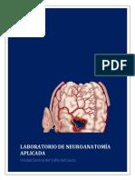 Casos Clinicos de Irrigacion Cerebral