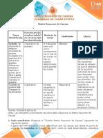 Matriz Resumen y Diagrama Causa Efecto _ Fabian Leonardo Larrota