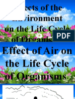 Effects of the Environment
