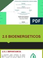 2.5 bioenergeticos