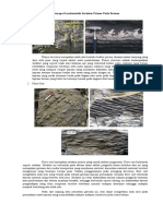 Beberapa Karakteristik Struktur Primer Pada Batuan