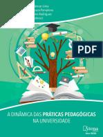 A dinâmica das práticas pedagógicas na universidade