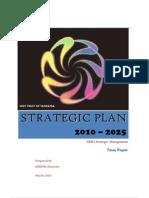 Strategic Management Paper 2010