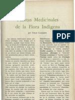 Plantas medicinales de la flora indigena atilio lombardo