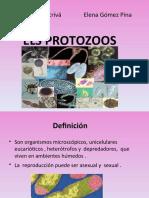 Protozoos