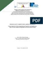 00 Trabajo Final de Grado ESPECIALIZACION PS T 2019 - Copia Tactica