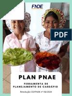 Plan Pnae - manual