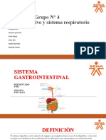 Sistema Digestivo y Sistema Respiratorio Geupo 4