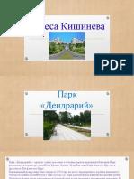 Парк «Дендрарий»