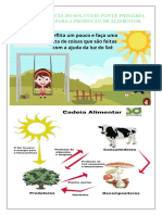 A importância do Sol para as plantas