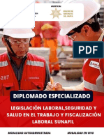 Diplomado_sunafil en Vivo 2021 (1)