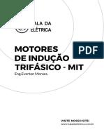 motores_inducao_trifasico_MIT