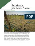 Sistem dan Metode Pengaturan Pohon Anggur