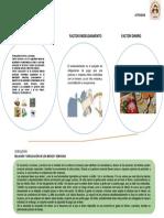 RELACION_DE_FACTORES_ECONOMICOS