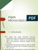 Slide Q - Algas Microscópicas - Nov2016