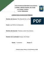 Actividad.- Ensayo, Era Virtual - Roy Eduardo de la Cruz Ortiz - 1°B - TIC