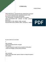 Caprioara de Emil Garleanu Planul Simplu Si Dezvoltat de Idei a5a (1)