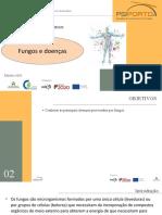PPT3 - fungos e doenças