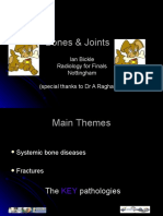 Bones_and_Joints