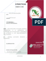 Formato 2020 Manual de Prácticas