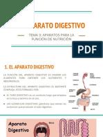 APARATO DIGESTIVO (2)