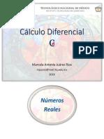 NUMEROS REALES CALCULO