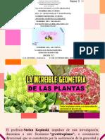 Arlette AJ. Presentación de Geometria en Las Plantas