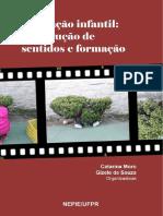 eBook - Educação Infantil Construcao de Sentidos e Formacao