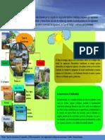 Tarea 2 Infografia Educacion para la Sostenibilidad Dariana Zacarias