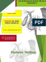 Diabetes-Mellitus-ppt