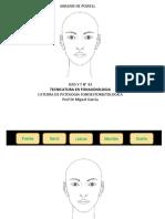 Analisis Facial 2