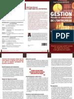 Plaquette Livre Ange Gestion Fiscale Et Comptable de Lentreprise