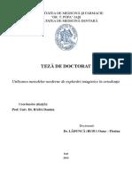 PhD Thesis Rusu Oana