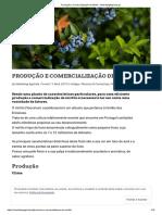 Produção e Comercialização de Mirtilo - MarketingAgricola.pt