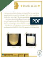 Agosto dourado - Descida do leite