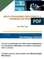 2. Micro-Organismos Industriais e Formação de Produtos