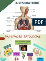 Enfermedades Sistema Respiratorio
