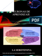Neuronas de aprendizaje