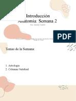 CLASE3- ARTROLOGÍA