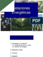 CV 8 relaciones energeticas2