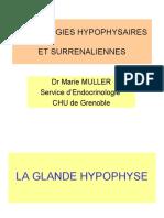 jaune oprange PATHOLOGIES HYPOPHYSAIRESET SURRENALIENNES