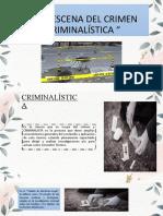 LA ESCENA DEL CRIMEN (1)