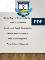 LAS 4 ETAPAS DEL DESARROLLO H.