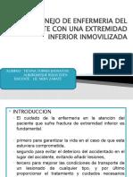 MANEJO DE ENFERMERIA DEL PACIENTE CON UNA EXTREMIDAD DIAPO FINAL